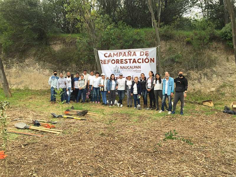 reforestacion-12